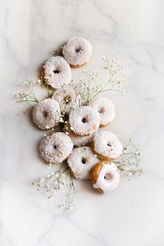 ... coconut mini donuts ...