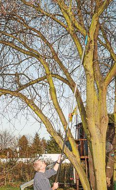 2 in 1 Handsäge Astschere Teleskop Seilzug Baumsäge Schneidgiraffe Baumpflege