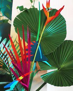 Hessney & Co ( Graffiti Flowers, Night In The Wood, Bojack Horseman, Party Centerpieces, Amazing Flowers, Indoor Plants, Flower Art, Planting Flowers, Floral Arrangements
