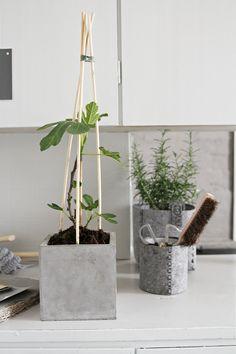 Concrete Crafts, Concrete Projects, Concrete Design, Concrete Planters, Greenery Decor, Interior Garden, Garden Pots, Plant Hanger, Indoor Plants