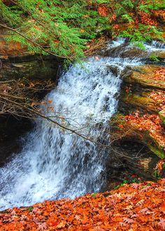 Waterfall - Autumn Decor - Fall Decor - Autumn Leaves - Nature Photography - Landscape Print - Seasonal Decor - Harvest Decor - Forest Print