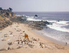 Orange California, Vintage California, Southern California, Laguna Beach, Newport Beach, Corona Beach, Capistrano Beach, Huntington Beach, Marine Life