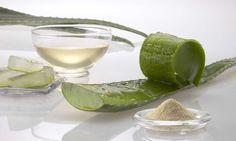 » La sábila es uno de los remedios naturales para la colitisBarcelona Alternativa | Temática de conciencia