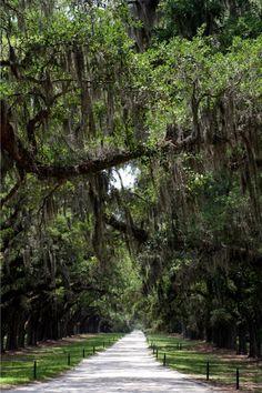 Boons Plantation Carolina own photo