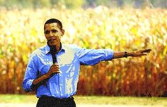 Did Obama Just Arrange For The Destruction Of Non-GMO Agriculture in the US? http://news.organicfoodmaps.com/10y  More news http://organicfoodreport.com #news #organic #food #nonGMO #gmo