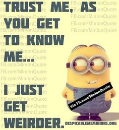 Funny Minions Quotes 107