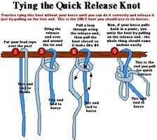 If you've ever seen a horse throw himself while tied, you will know it's a dangerous situation for everyone. Including you, but (like most horse people) you're probably more worried about your horse. Learn the quick release knot & save yourself that breakaway halter for some other time when Poopsie goes berserk over a horsefly or something equally threatening.