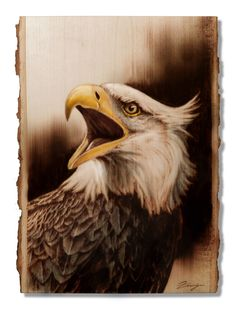 Wood Burning Eagle by Dennis Franzen