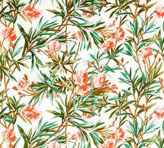 Vintage Wallpaper Exotic Flowers