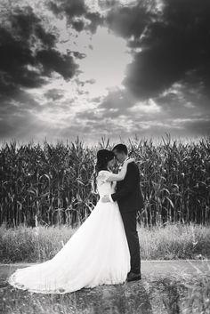 Brautpaar vor Maisfeld