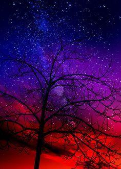 Milky Way Galaxy Life Under The Milky Way: Robert Krause Baker Beautiful Sky, Beautiful Landscapes, Beautiful World, Beautiful Places, Pretty Sky, Photo Galaxie, Galaxy Wallpaper, Nature Wallpaper, Milky Way