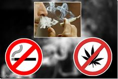 Baja el consumo de tabaco en Argentina, pero sube el de marihuana - http://www.leanoticias.com/2014/04/13/baja-el-consumo-de-tabaco-en-argentina-pero-sube-el-de-marihuana/