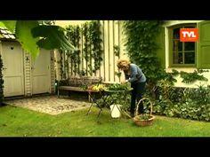 TUIN: hoe maak ik een herfststuk met materiaal uit de tuin