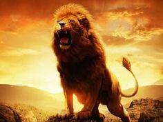 il coraggio, la componente più importante del mio carattere. A volte si nasconde, ed il leone rappresenta proprio la capacita di ruggire e reagire alle situazioni.