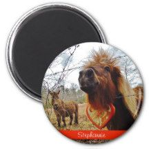 mini donkey and horse Valentine Heart red Refrigerator Magnets  horse horses