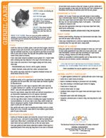 Gerbil Care Tip Sheet ASPCA