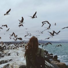eliego:  Kate and the birds by kevinrussmobile on Flickr.