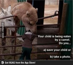Take a picture or save your child..... Can't believe someone could be that stupid to take a picture!!! Some people
