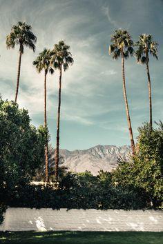 https://flic.kr/p/PeqG5F | Palm Springs