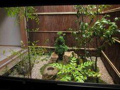 tsubo-niwa(坪庭) - little garden space