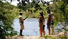 A Walk in the Woods Victoria Falls, Walk In The Woods, Bird Watching, Rafting, Canoe, Cruise, Southern, Africa, Boat