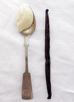 Vanilla body cream with shea butter coconut oil & vanilla infused almond oil Homemade Body Butter, Homemade Vanilla, Jojoba Oil, No Bake Cake, Shea Butter, Coconut Oil, The Balm, Pure Products, Cream