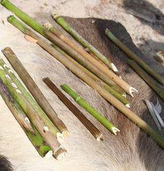 Markkinavierailla oli mahdollisuus valmistaa oma muinainen soitin. Oikean valmistustavan lisäksi myös pilliin puhalmiseen piti oppia oikea tekniikka. Oulu (Finland) Asparagus, Vegetables, Food, Studs, Essen, Vegetable Recipes, Meals, Yemek, Veggies