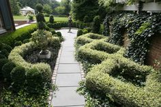 Boxwood Landscaping Design Ideas, Pictures, Remodel, and Decor - page 10