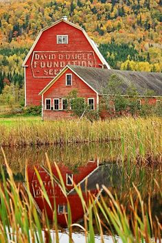 A historic Maine barn nestled in a hillside in Fort Kent. An advertising barn in MAINE? I HAVE to go and find this one for SURE! Casas Country, Country Barns, Country Living, Country Life, Country Charm, Barns Sheds, Pole Barns, Barn Art, Farm Barn