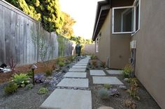 Mid Century Modern Landscape Design AFTER Picture