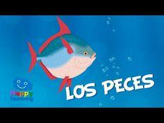 Los Peces   Vídeos Educativos para Niños - YouTube