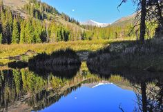 Beaver Pond Reflection Photograph by Aaron Spong