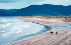 Rossbeigh Beach on the Dingle Peninsual, County Kerry, Ireland hosts some popular horse races as well. http://www.irishcottageholidays.com/accommodation-detail/en/cottage-23/Rossbeigh_Beach_Holiday_Cottages