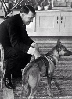 Hitler Pictures > Collection of pictures about Adolf Hitler. Hitler was the driving force and uncontested leader of National Socialism, whose rise and design he caused. Raza Aria, Germany Ww2, Picture Blog, War Dogs, The Third Reich, History Books, German Shepherd Dogs, World War Two, Wwii