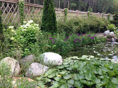 Border around pond at Stonehouse farm.