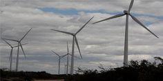 A energia gerada pelos ventos poderia ser uma solução nos períodos de estiagem. Hoje, a energia eólica representa 4% do que é consumido no país e esse número poderia ser bem maior. Só no Nordeste,…