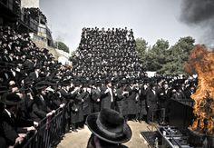 Orthodox of Israel