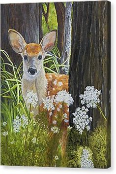 Giclee paper and canvas prints of my original painting of a little whitetail fawn watching me at the edge of the forest.by Johanna Lerwick Wildlife / Nature Artist Several sizes are available. Fine Art Prints, Canvas Prints, Deer Art, Nature Artists, Wildlife Nature, Baby Deer, Original Paintings, Deer Paintings, Nature Paintings
