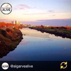 Muito Obrigada @algarvealive pelo destaque  #Vilamoura#portugal#visitportugal#seaview#sea_sky_nature#world#travel#travelgram#algarve#bluesky#city#citylife#blue#sea#sunset by cristinacopio