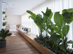 Plantas interior The green corner has a vertical garden of spices and the flowerpot installed on the Interior Design Plants, Interior Garden, Plant Design, Garden Design, House Design, Indoor Garden, Indoor Plants, Office Plants, Tropical Garden