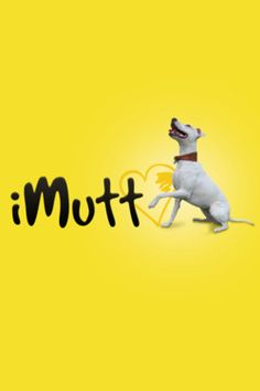 launch screen on iMutt