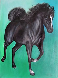 Little black pony. Mixed media on canvas board by Sasha Taylor