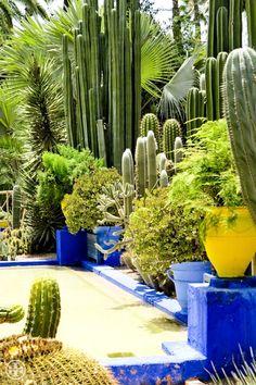YSL's Majorelle Gardens