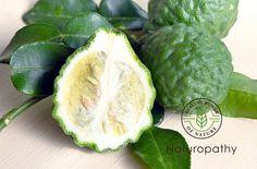 【精油:ベルガモット】~柑橘系の爽やかな香りは沈んだ心を救ってくれる~#エッセンシャルオイル#アロマレシピ#アロマテラピー#ハーブ#ガーデニング