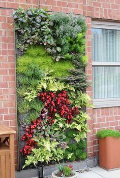 Stunning Ein vertikaler Garten selber bauen Schritt f r Schritt Anleitung Garten Haus u Garten Wandverkleidung Gardens
