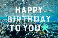 【可愛い誕生日画像】夏&海&南国の『HAPPY BIRTHDAY』ver.5