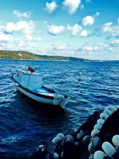 Deniz yaşam..