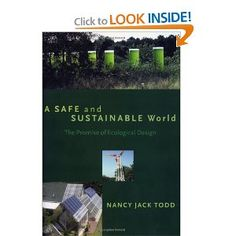 A Safe and Sustainable World: The Promise Of Ecological Design: Nancy Jack Todd: 9781559637787: Amazon.com: Books