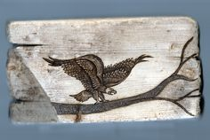 This wood burning of a Bald Eagle perched on a tree branch was done on a piece of salvaged driftwood found on a beach in Maine, by Trevor Moody of Dirigo Craft & Supply Co., 2012.