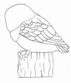 owl carving pattern ( B)